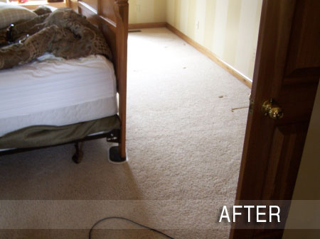 CARPET REPAIR SERVICE Hardwood Flooring Installation